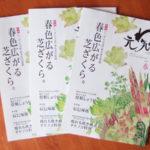 元気のわ。春号の表紙は山菜。