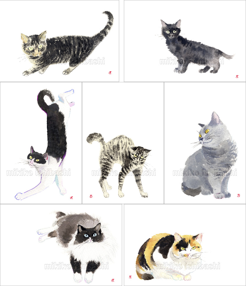 猫のイラスト絵葉書
