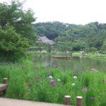 三渓園に行って来ました。日本の夏じたく展